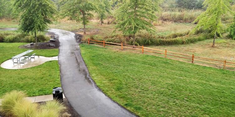 Autumn Rain 2