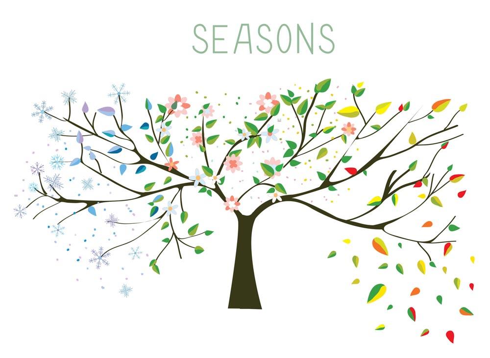 4 Seasons Tree