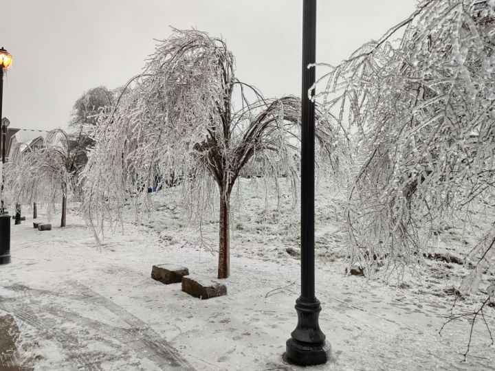 Mother Nature Hits Hard in the Portland Oregon Area