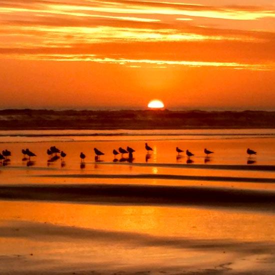Beachville Summer Sunset