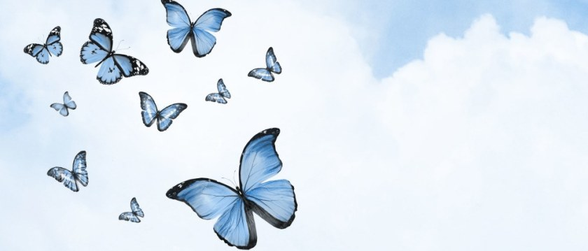 Color sky with clouds and butterflies